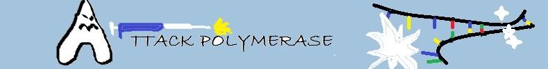Attack Polymerase